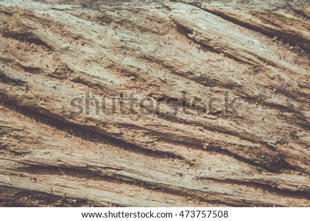 Old wood cracked texture used as background for text input.