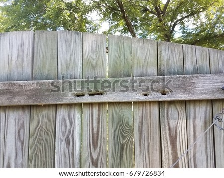Old Wood Fence With Holes In It From Carpenter Bees