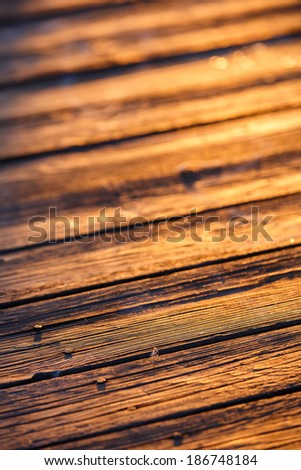 Old wood scratched surface in gold light of sunset with macro details - stock photo