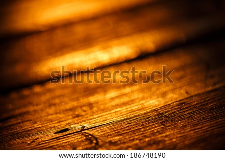 Old wood scratched surface in gold light of sunset with macro details