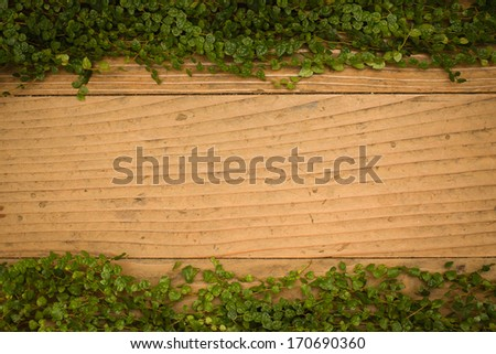 Old wood texture background and green leaves with vignette effect