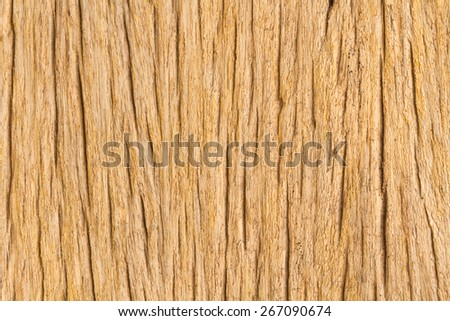 Old wood texture closeup style