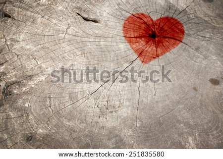 Old wood texture, picture of red heart for Valentine`s Day