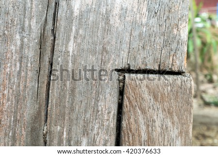 Old wood wall texture background,blur background
