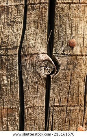 Old wood with hobnails closeup - stock photo