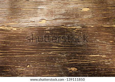 Old wood with some sand on it texture - stock photo