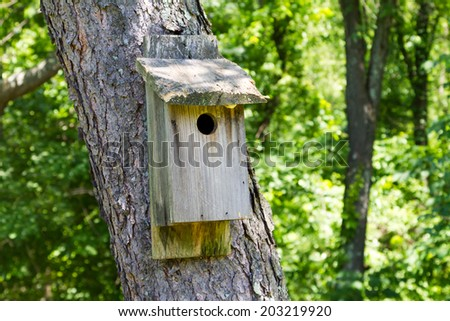 Old wooden birdhouse on a tree in the forest - stock photo
