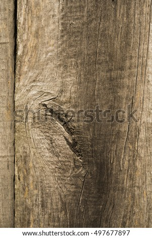 old wooden board. wood texture