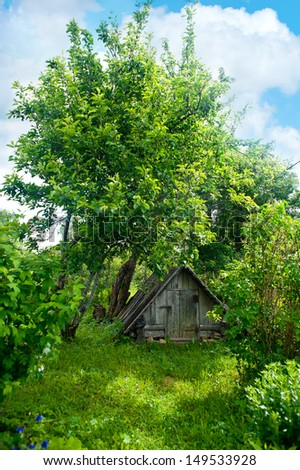 Old wooden cabin surrounded by the forest - stock photo