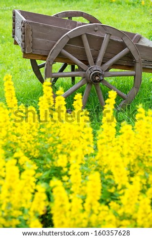 Old wooden cart on the field with green grass and yellow flowers - stock photo