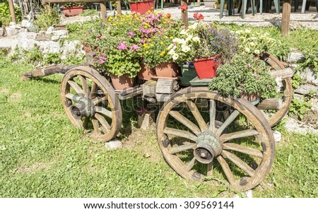 Old wooden cart with pots of blooming flowers of summer