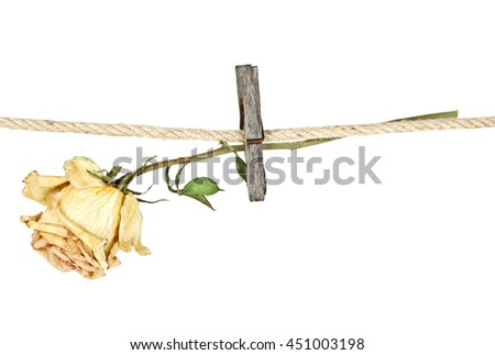 Old wooden clothespin on rope with faded rose on a white background