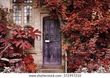 Old wooden door of stone brick house with alternate surreal colored landscape