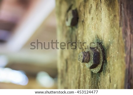 Old wooden door with bolt and nut