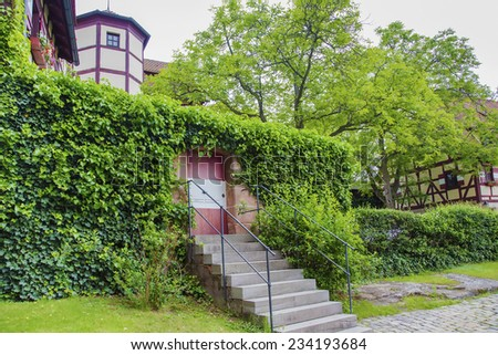 Old wooden door with ivy - stock photo
