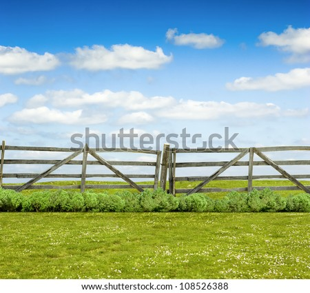 Old wooden fence and green grass yard - stock photo