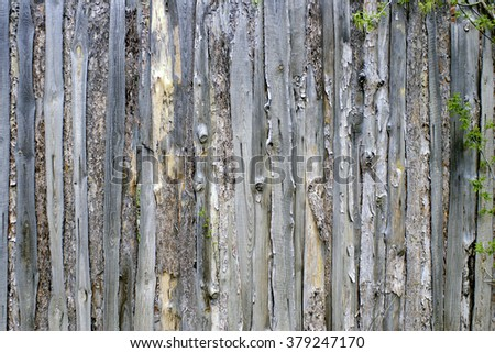 old wooden fence out of pine tree