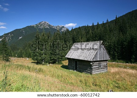 Old wooden house in Chocholowska Valley. Poland, Tatra National Park.