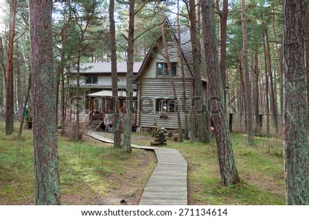 Old wooden house in the woods. Autumn season. Pine forest. - stock photo