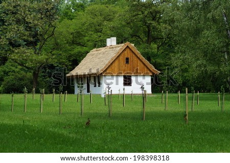 Old wooden house with straw roof - stock photo