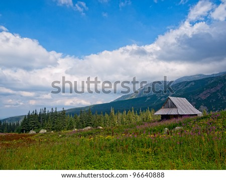 Old wooden hut in the Tatra Mountains, Poland. - stock photo