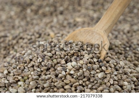 Old wooden spoon placed in a pile of hemp seeds - stock photo