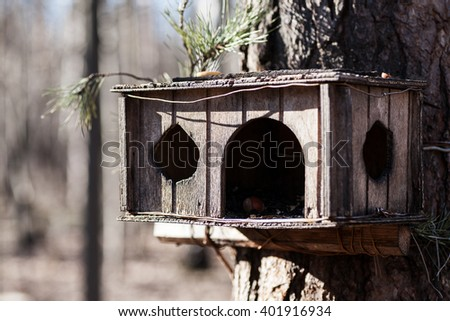 Old wooden squirrel feeder on the tree, closeup, selective focus - stock photo