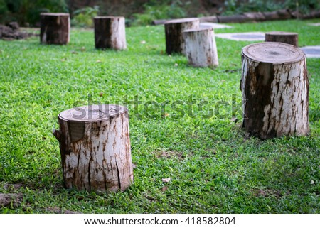 Old wooden stump. - stock photo