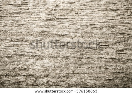 Old wooden surface for textured background. Toned.