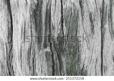 Old wooden texture background - stock photo
