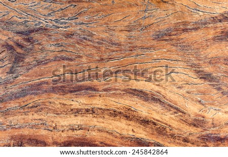 Old wooden texture for background.