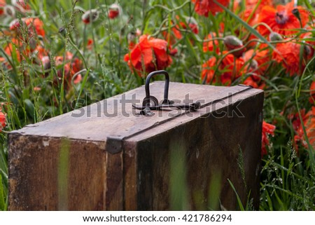 Old wooden vintage suitcase standing among poppies