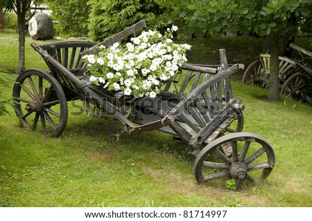 Old wooden wagon filled with flowers, nature concept