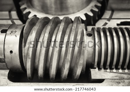 old worm gear - close up