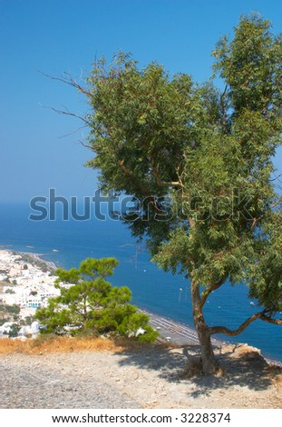 olive tree and view of the Kamari beach Oia Santorini Greece - stock photo