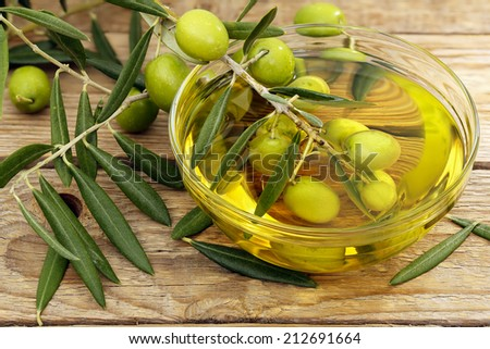 olive tree branch dipped in bowl of olive oil - stock photo