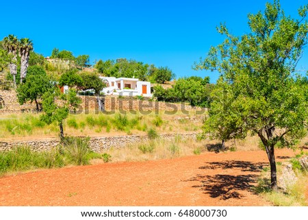 Olive trees on field and white rural house in distance in countryside landscape of Ibiza island in spring, Spain