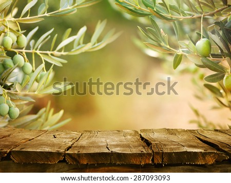 Olives with table. Wooden table with olive trees