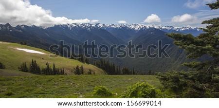 Olympic National Park, USA - stock photo
