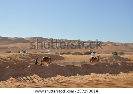Oman - Dec, 30: Man with single-humped camel in the desert on December, 30, 2013. Oman - stock photo