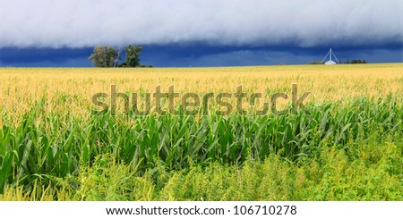 Ominous clouds precede the strong winds of a thunderstorm a cornfield in Illinois - stock photo