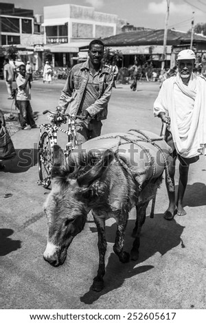 OMO, ETHIOPIA - SEPTEMBER 19, 2011: Unidentified Ethiopian man with donkey. People in Ethiopia suffer of poverty due to the unstable situation