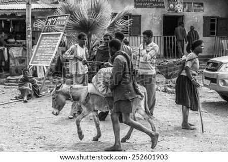 OMO, ETHIOPIA - SEPTEMBER 19, 2011: Unidentified Ethiopian men charge a donkey. People in Ethiopia suffer of poverty due to the unstable situation