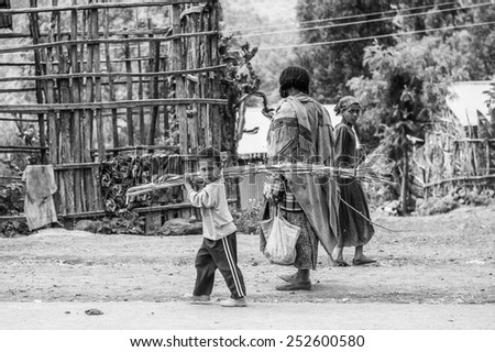 OMO, ETHIOPIA - SEPTEMBER 21, 2011: Unidentified Ethiopianboy carries wood. People in Ethiopia suffer of poverty due to the unstable situation