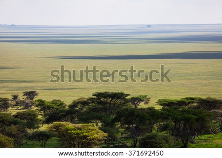 On Serengeti and a giraffe with her baby all alone on the neverending plains.  - stock photo