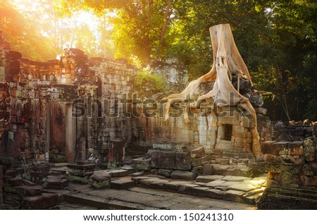 On the ruins of Preah Khan temple complex in Cambodia. - stock photo
