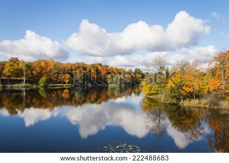 on the shore of a lake in autumn