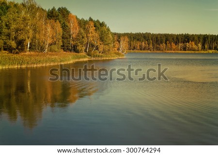 On the shore of a large lake with trees with yellow leaves. The crowns of trees reflected in the water. - stock photo