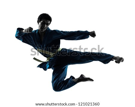 one asian man exercising karate vietvodao martial arts in silhouette studio isolated on white background - stock photo