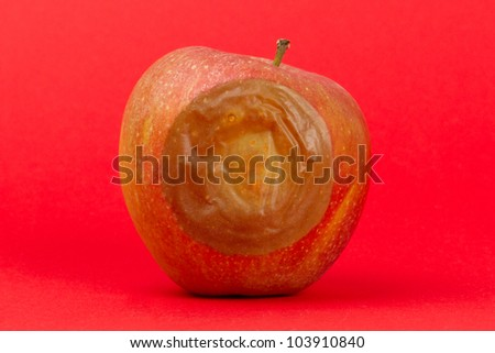 One bad red apple isolated on a red background - stock photo
